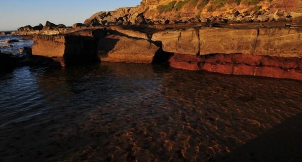 Forresters Beach – again